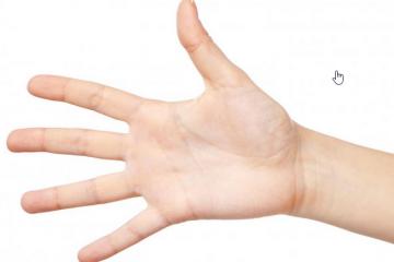 شخصية اليد الملوقية الشكل وحياتة الشخصية